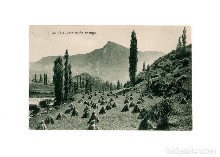 SALLÉNT.(HUESCA).- RECOLECCIÓN DE TRIGO- (Postales - España - Aragón Antigua (hasta 1939))