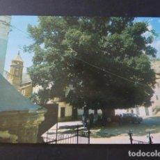 Postales: CAMARENA DE LA SIERRA TERUEL PLAZA DEL OLMO. Lote 205381295