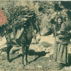 Postales: MUJER ARAGONESA VOLVIENDO DEL BOSQUE CON UNA CARGA DE LEÑA. CIRCULADA EN 1905. MUY RARA.. Lote 242364380