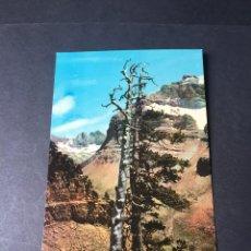 Postales: POSTAL DE CANFRANC - BONITAS VISTAS - EL DE LA FOTO VER TODAS MIS POSTALES. Lote 262511470