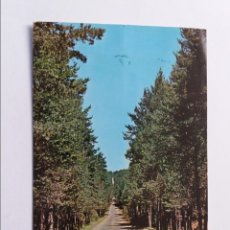 Postales: POSTAL - TERUEL - ORIHUELA DEL TREMEDAL - RECTA DEL PUERTO. Lote 295643858