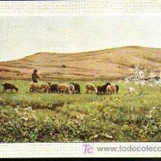 Postales: JOAQUIN VAYREDA - LO REMAT. Lote 3264450