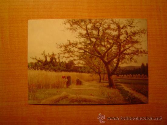 POSTAL MUSEO DE ARTE MODERNO (BARCELONA) Nº 8 JOAQUIN VAYREDA 1843 - 1894 LA SIEGA SIN CIRCULAR (Postales - Postales Temáticas - Arte)