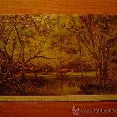 Postales: POSTAL MUSEO DE ARTE MODERNO (BARCELONA) Nº 7 JOAQUIN VAYREDA 1843-1894 PAISAJE SIN CIRCULAR. Lote 21413161