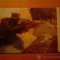 Postales: POSTAL MUSEO DE ARTE MODERNO (BARCELONA) JOAQUIN MIR ACEQUIA SIN CIRCULAR . Lote 59796692