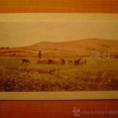 Postales: POSTAL MUSEO DE ARTE MODERNO (BARCELONA) JOAQUIN VAYREDA LO REMAT SIN CIRCULAR . Lote 21422383