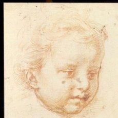 Postales: ANDREA DEL SARTO, POSTAL , TESTA DI PUTTO , PRINTED IN ITALY AÑOS 70, SIN USAR. Lote 29253387
