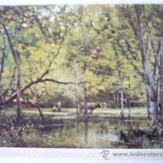 Postales: JOAQUIN VAYREDA. MUSEO ARTE MODERNO BARCELONA. Nº 7. ESCUDO DE ORO. Lote 31770757