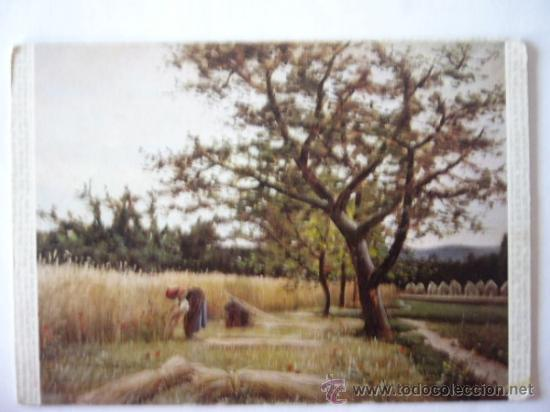 JOAQUIN VAYREDA. MUSEO ARTE MODERNO BARCELONA. Nº 8. ESCUDO DE ORO (Postales - Postales Temáticas - Arte)
