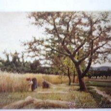 Postales: JOAQUIN VAYREDA. MUSEO ARTE MODERNO BARCELONA. Nº 8. ESCUDO DE ORO. Lote 31770763