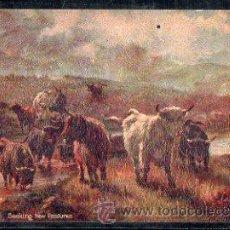 Postales: TARJETA POSTAL RAPHAEL TUCK & SONS. OILETTE - IN THE SCOTTISH HIGHLANDS 9441. Lote 32338381