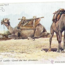 Postales: PS5487 THE HOLY LAND 'CAMELS AND THEIR ATTENDANTS'. OILETTE. TUCK AND SONS. 1906. Lote 46557395