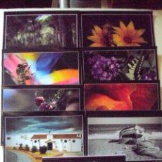 Postales: LOTE DE 8 POSTALES FOTOGRAFICAS DE PACO GUZMAN RECOGIDAS CON EL TITULO DE VISIONES. Lote 57045054