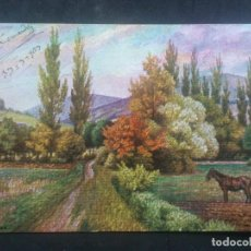 Postales: POSTAL PAISAJE, ESCRITA AÑO 1903. Lote 68777441