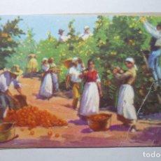 Postales: POSTAL RECOLECCION NARANJA - C.RUANO -ESCRITA BB. Lote 99297567