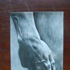 Postales: MIGUEL ANGEL MICHELANGELO DETALLE AMNO DAVID GALERIA DE LA ACADEMAIA FLORENCIA POSTAL FOTOGRAFIA. Lote 194260898