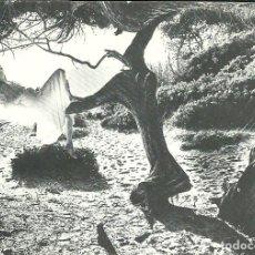 Postales: TONY KEELER FOTOGRAFIA EN POSTAL. NO ESCRITA.. Lote 116133538
