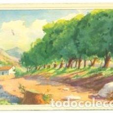 Postales: POSTAL PINTURA. PAISAJE RURAL. SCHWARZ. REF. 7-ARTE73. Lote 114532031