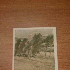 Postales: TARJETA POSTAL A. CASAS ABARCA PRO PATRIA SOCORRO DE LAS VICTIMAS DEL RIF SIN CIRCULAR. Lote 115316503