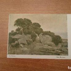 Postales: TARJETA POSTAL A. TOLOSA PRO PATRIA SOCORRO DE LAS VICTIMAS DEL RIF SIN CIRCULAR. Lote 115316699