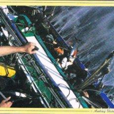 Postales: EN LA MAR, POSTAL DE UNA FOTOGRAFIA DE ANDREY URCELAYETA. Lote 131509658