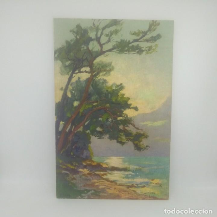 Postales: Pins au Cap Martin. Postal enviada a Banyoles Nº425 - Foto 2 - 175960428