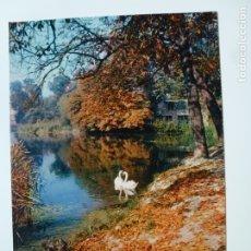 Postales: POSTAL. 12000. ENVIRONS DE PARIS. LES CYGNES D'ENGHIEN. ED. LES PHOTOGRAPHIES ALBERT MONIER. . Lote 179390261