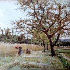 Postales: PINTURA: LA SIEGA DE JOAQUÍN VAYREDA. 12 MUSEO DE ARTE MODERNO (BARCELONA). ESCUDO DE ORO. NUEVA. CO. Lote 194362780
