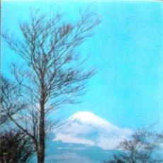 Postales: PAISAJE CON MONTE NEVADO AL FONDO. POSTAL TRIDIMENSIONAL. NUEVA. COLOR. Lote 195064698