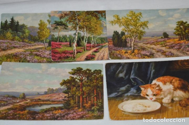 Postales: Lote variado / 16 antiguas postales - Paisajes / Made In Switzerland ¡Mira fotos y detalles! - Foto 5 - 211663258