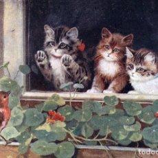 Postales: POSTAL DEL CUADRO THREE LITTLE KITTENS LOOKING OUT WINDOW DE BERNARD COBBE TEMA: GATOS, RAPHAEL TUCK. Lote 267480909