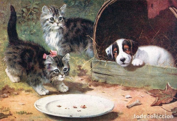 POSTAL DEL CUADRO TWO KITTENS, A PLATE AND A DOG, DE BERNARD COBBE TEMA: GATOS, PERROS, RAPHAEL TUCK (Postales - Postales Temáticas - Arte)