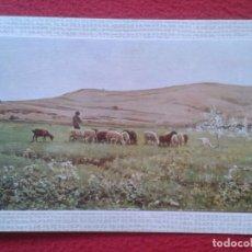 Postales: POST CARD Nº 21 MUSEO DE ARTE MODERNO BARCELONA JOAQUÍN VAYREDA LO REMAT, IMAGEN DE OVEJAS ? CABRAS?. Lote 254527680
