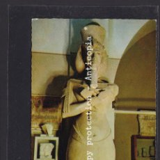 Postales: POSTAL DE ARTE - THE EGYPTIAN MUSEUM - CAIRO. NO. 713 COLOSSAL LIMESTONE STATUE OF KING AKHNATON 137. Lote 254962670