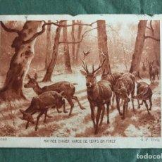 Postales: MATINEE D' HIVER. HARDE DE CERFS EN FORET. G.F. ROTIG. BRAUN & CIE 6900, CIRCULADA EN ESPAÑA 1932. Lote 263536895