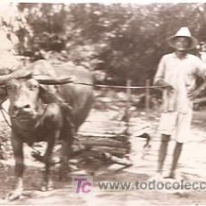 Postales: POSTAL CIRCULADA FOTOGRAFICA FILIPINAS . Lote 5482397