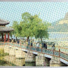 Postales: TARJETA POSTAL- CHINA.. Lote 21072745