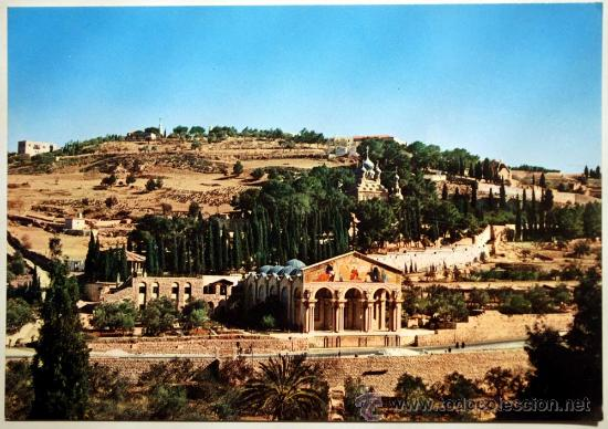 ISRAEL. JERUSALEM. JORDAN. GENERAL VIEW OF GETHSEMANE. (Postales - Postales Extranjero - Asia)