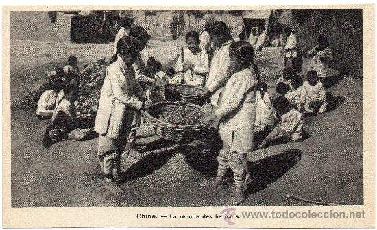 CHINA, LA RECOLECCION DEL GRANO, PRECIOSA POSTAL (Postales - Postales Extranjero - Asia)