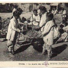 Postales: CHINA, LA RECOLECCION DEL GRANO, PRECIOSA POSTAL. Lote 32026254