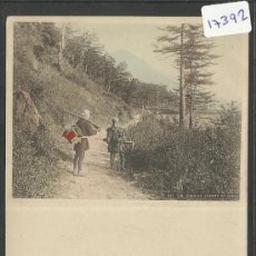 Postales: JAPON - REVERSO SIN DIVIDIR - (17392). Lote 39158701