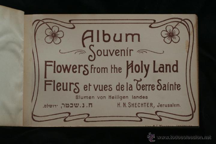 ALBUM POSTALES ISRAEL CON FLORES AUTOCTONAS (Postales - Postales Extranjero - Asia)