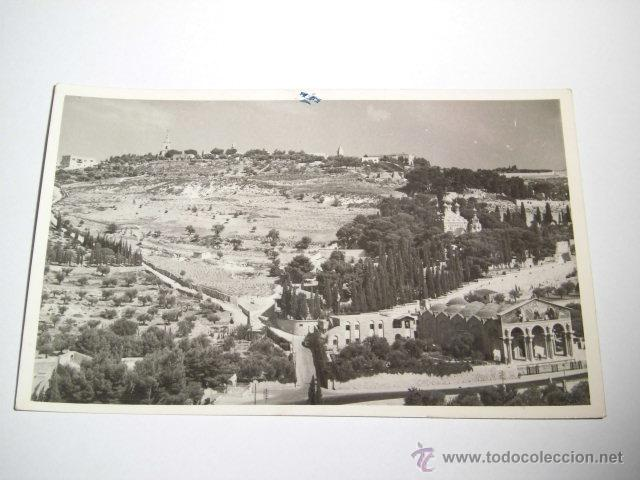 MOUNT OF OLIVES.LEON PHOTO JERUSALEM (Postales - Postales Extranjero - Asia)