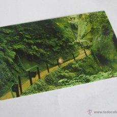 Postales: Aª POSTAL-CHINA-SHANKLIN-NUEVA-SIN CIRCULAR-.. Lote 44333926