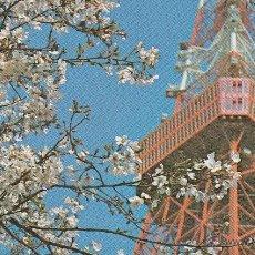 Postales: Nº 14631 TOKYO JAPON. Lote 45914972