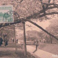 Postales: POSTAL JAPON - TOKIO - CHERRY BLOSSOMS AT KOGANEI NEAR TOKIO - CIRCULADA. Lote 81747788