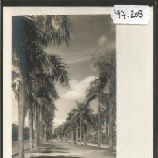 Postales: POSTAL MANILA - FILIPINAS -VER REVERSO-(47.203). Lote 84647712