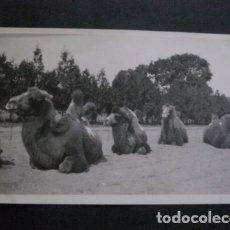 Postales: POSTAL ANTIGUA FOTOGRAFICA - CHINA -VER FOTOS-(4.140). Lote 87177676
