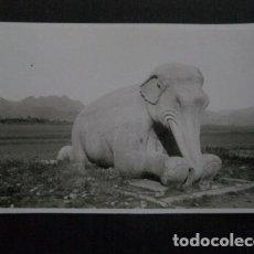 Postales: CHINA - FOTO ANTIGUA -NO POSTAL - REVERSO BLANCO - TAMAÑO POSTAL -VER FOTOS-(4.156). Lote 87178492