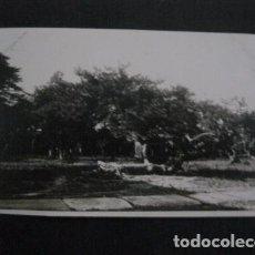 Postales: CHINA - FOTO ANTIGUA -NO POSTAL - REVERSO BLANCO - TAMAÑO POSTAL -VER FOTOS-(4.177). Lote 87179520